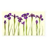 Iris púrpuras - plantilla modificada para tarjetas de visita