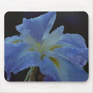 Iris Rocío-Caído Tapetes De Ratones