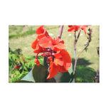 Iris rojo salvaje impresión de lienzo