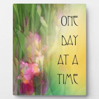 Iris rosados y rojos de un día a la vez placa para mostrar