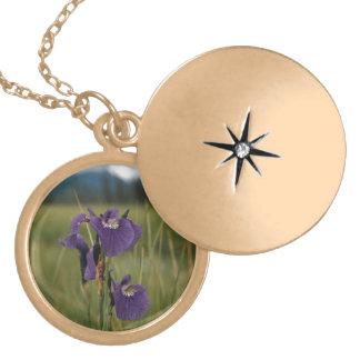 Iris salvaje joyerías