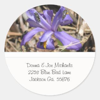 Iris salvaje con los pegatinas de la dirección de pegatina redonda