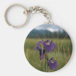 Iris salvaje llavero