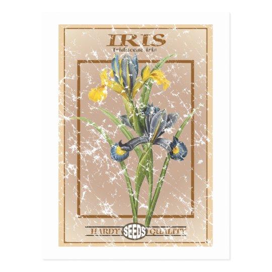 Iris seed packet - distressed postcard