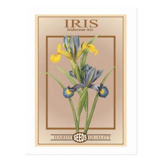 iris seed packet postcard
