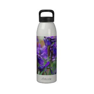 Iris siberiano bonito botellas de agua reutilizables