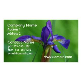 Iris siberiano bonito tarjetas de visita