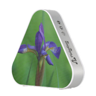 Iris siberiano floreciente altavoz bluetooth