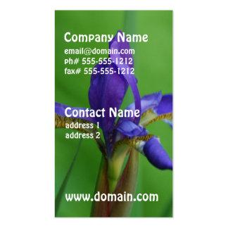 Iris siberiano floreciente tarjetas de visita