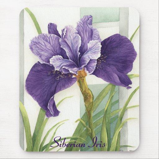 Iris siberiano - Mousepad