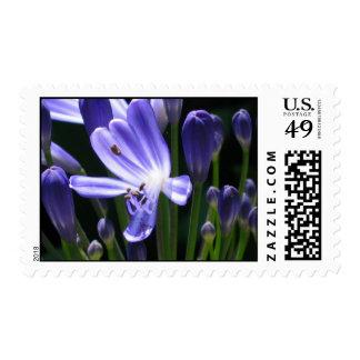 Iris Stamps