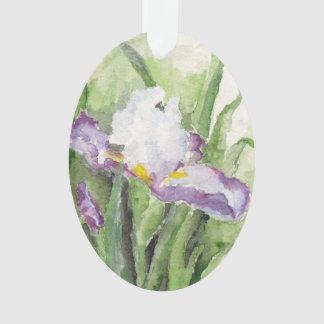 Iris suave de la acuarela