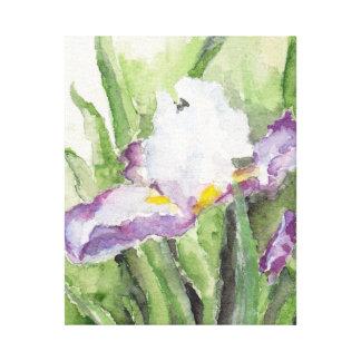 Iris suave de la acuarela impresión en lienzo estirada