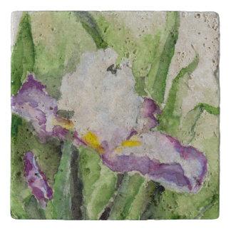 Iris suave de la acuarela salvamanteles