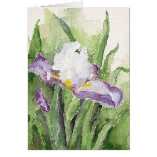 Iris suave de la acuarela tarjeta pequeña