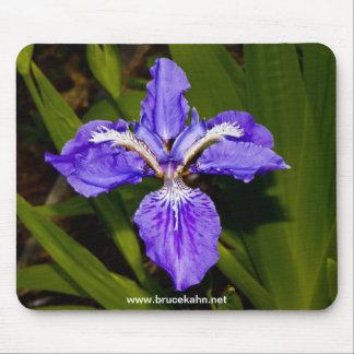 Iris Alfombrilla De Raton