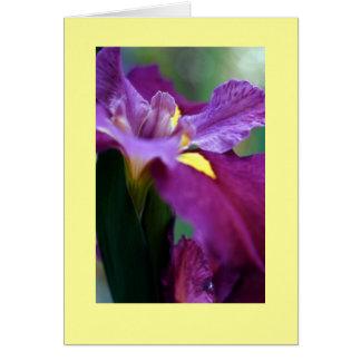 """Iris "" Tarjeta"