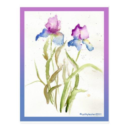 Iris Tarjeta Postal