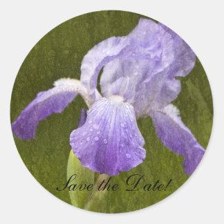 Iris texturizado pegatina redonda