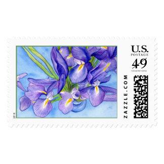 Iris Vase Blank Stamp