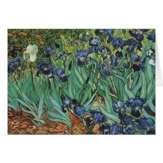 Iris Vincent van Gogh Tarjeton