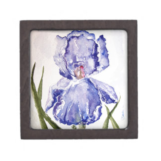 Iris Watercolor painting Purple - Blue Gift Box