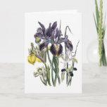 Iris Watercolor Sympathy Card