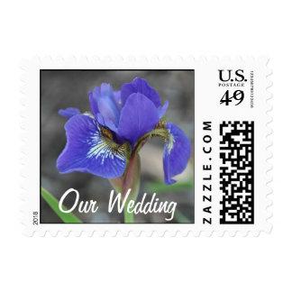 Iris Wedding 1 Stamp