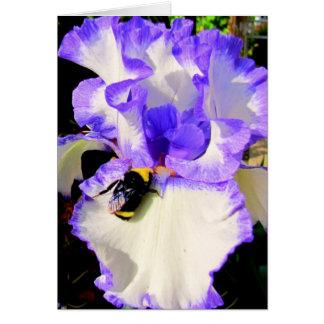 Iris y abeja tarjeta pequeña