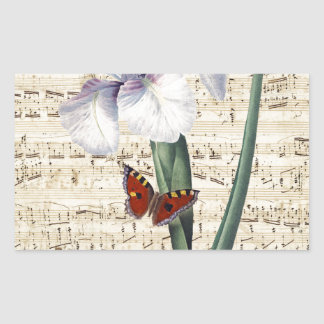 Iris y música rectangular pegatinas