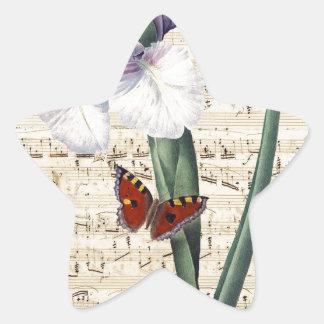 Iris y música calcomanía forma de estrellae