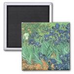 Irises, 1889 fridge magnets