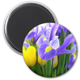 Irises And Tulips Spring Flowers 2 Inch Round Magnet
