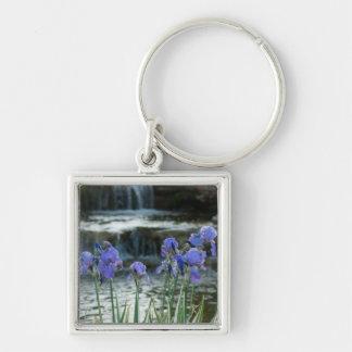 Irises At Chateau Keychain