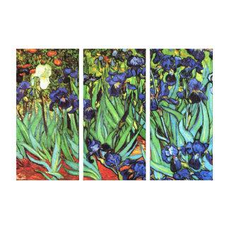 Irises by Van Gogh Fine Art Triple Canvas Print