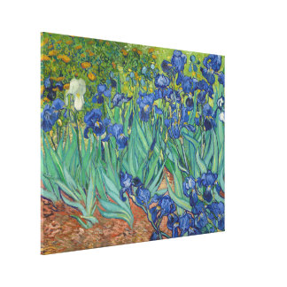 Irises by Vincent Van Gogh 1889 Canvas Print