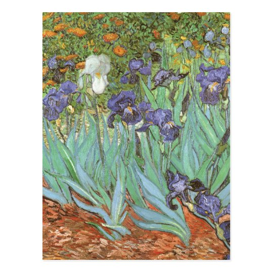Irises by Vincent van Gogh, Vintage Flowers Art Postcard