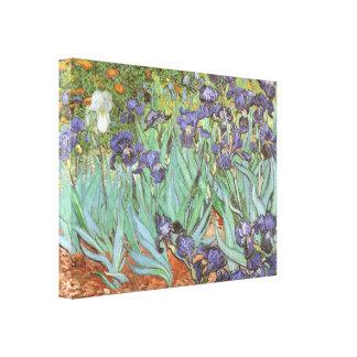 Irises by Vincent van Gogh, Vintage Garden Flowers Gallery Wrap Canvas
