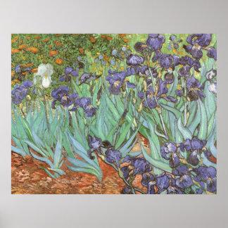 Irises by Vincent van Gogh, Vintage Impressionism Poster