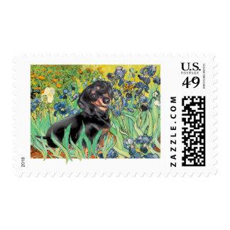 Irises - Dachsund (BT4) Postage Stamps