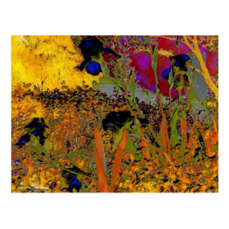 Irises for Vincent Postcard