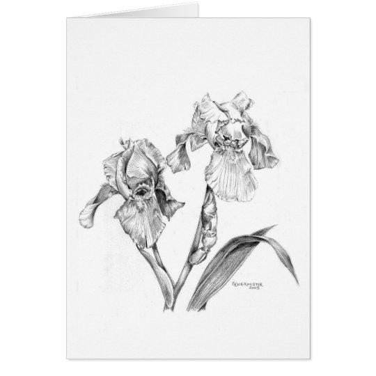 Irises in pencil card