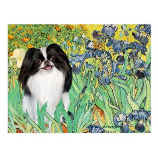 Irises - Japanese Chin 3 Postcard