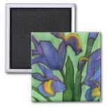 Irises Magnet