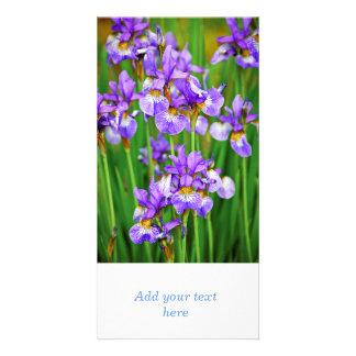 Irises Photo Greeting Card
