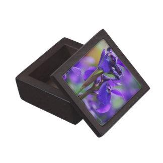 Irises Premium Gift Box