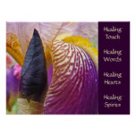 Irises prints Healing Touch Words Hearts Spirits Posters