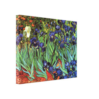 Irises, Saint-Remy, Vincent Van Gogh Canvas Print