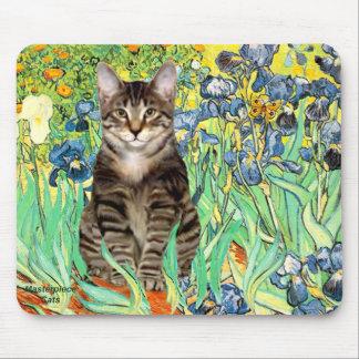 Irises - Tabby Tiger cat 30 Mouse Pad