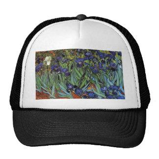 Irises Van Gogh Hat
